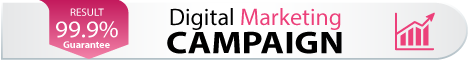 online digital marketing campaign